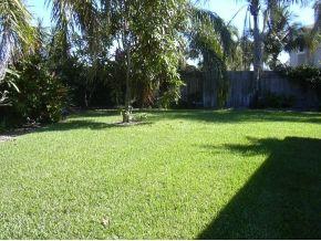 albacore backyard